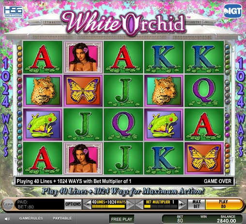 White Orchid Slot Machine Online ᐈ IGT™ Casino Slots